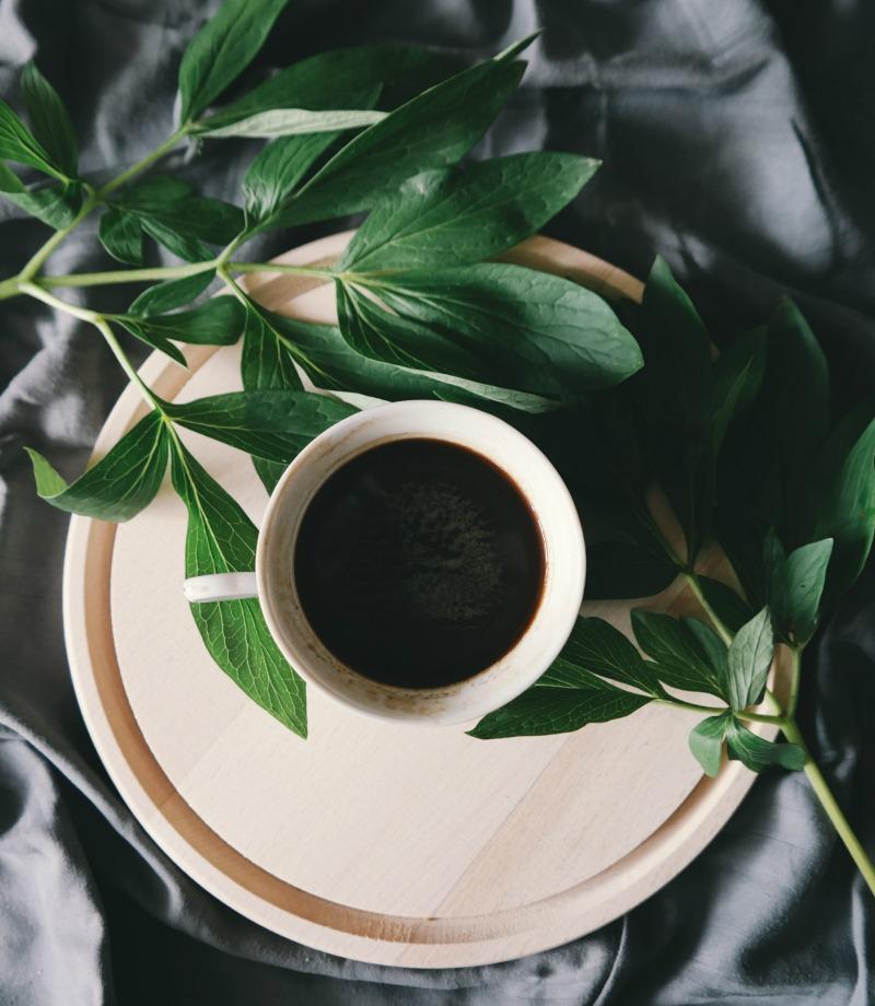 Rainforest certified coffees Brigitte tohm