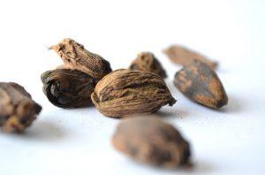 Nutmeg - Coffee Mill
